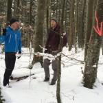 Im Rodungsbereich von Baustelle und Zuwegung wird jeder zu fällende Baum markiert und erfasst.