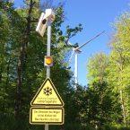 Kurios, aber Vorschrift gemäß der Baugenehmigung: Eine Ampel regelt bei Frost den Verkehr im Wald.